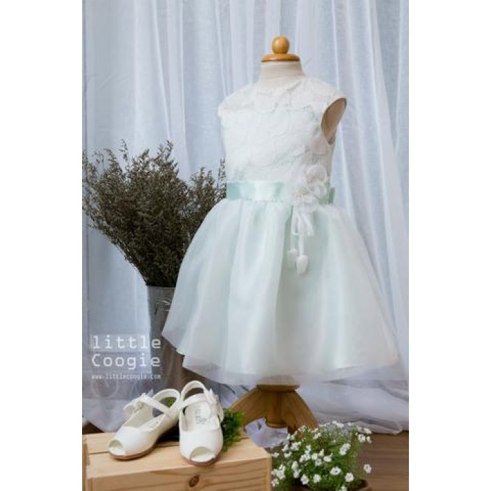 Mint Leaf Net Frock - from category Dresses (Luxurina Accessories)